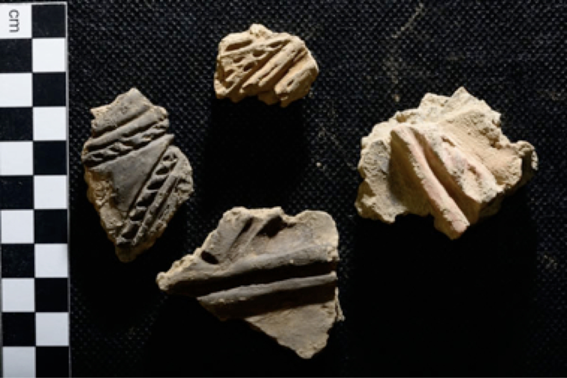 Ness of Brodgar grooved ware
